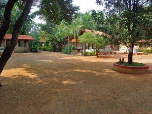 The Jungle Lodge, Bandhavgarh.