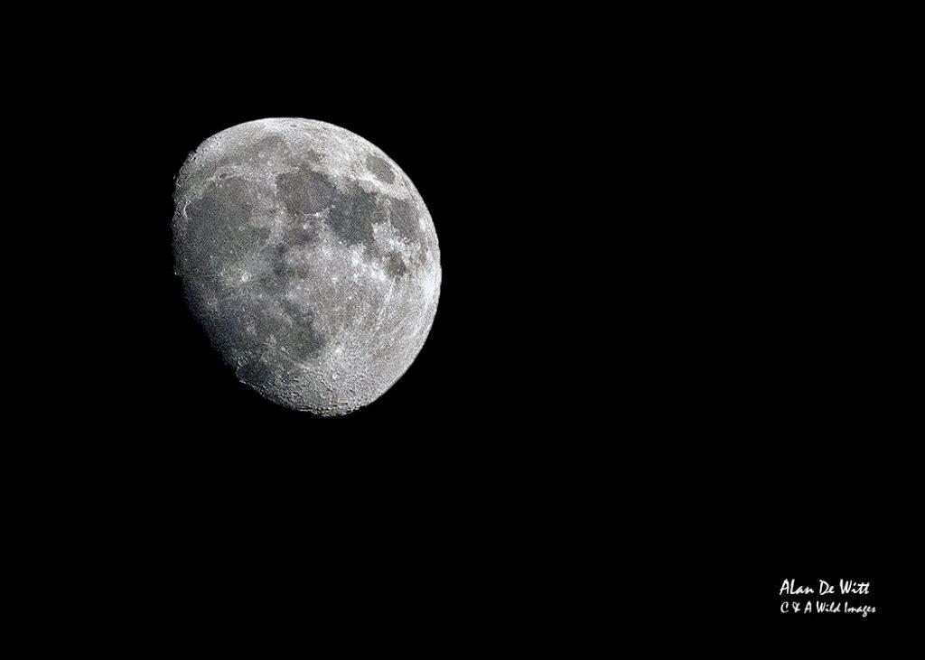 Moon over Bandhavgarh