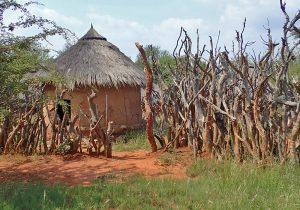 Chiefs hut in the Pedi village