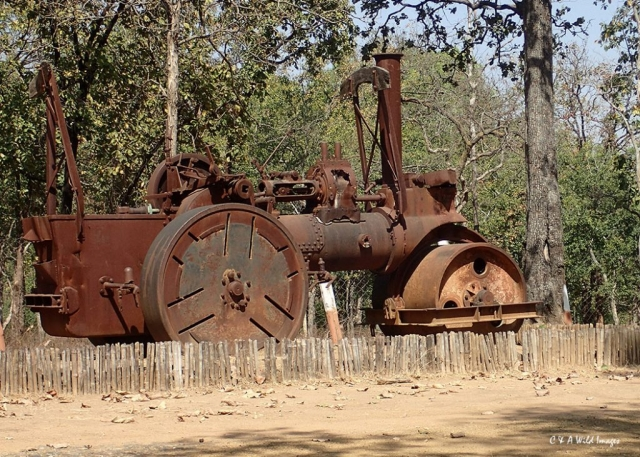 Steam Engine at Churna Camp