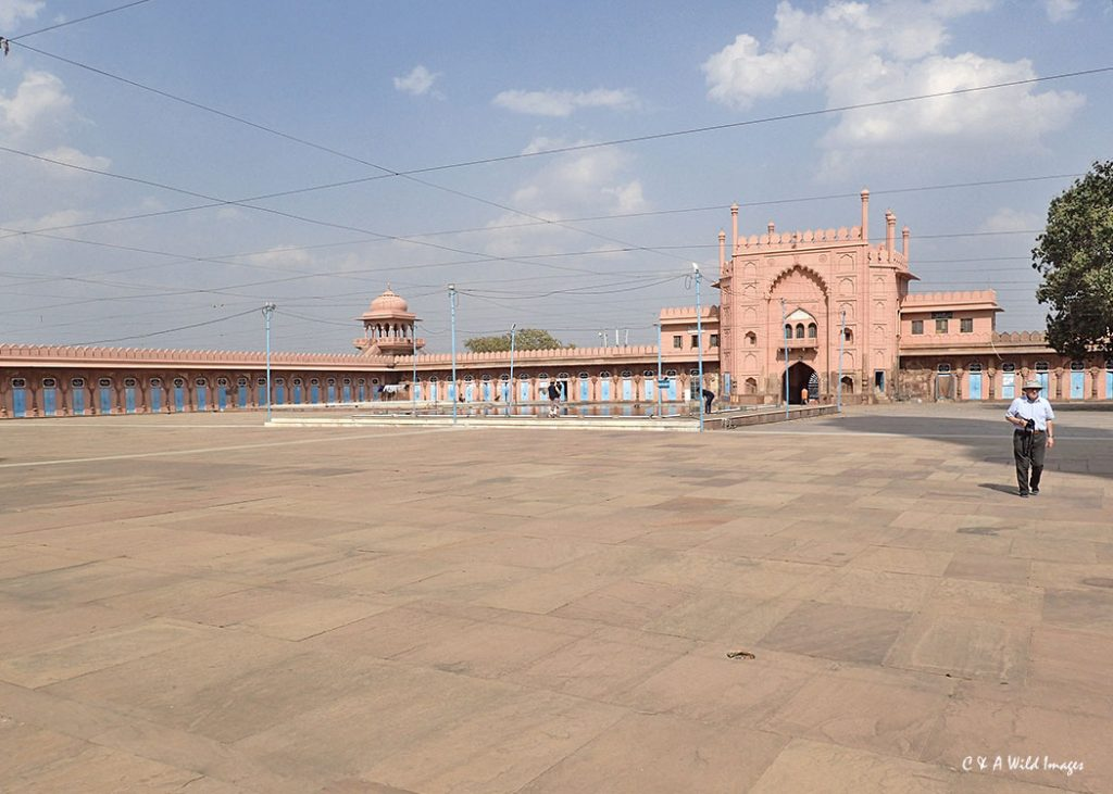 The huge courtyard at Taj-ul-Masjid Mosque in Bhopal
