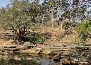 Rocky river at the breakfast stop in Satpura National Park