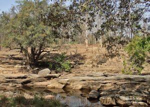 Rocky river at the breakfast stop in Satpura National Park