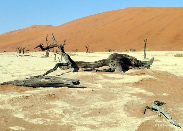 Sand Dunnes at Sossusvlei Namibia